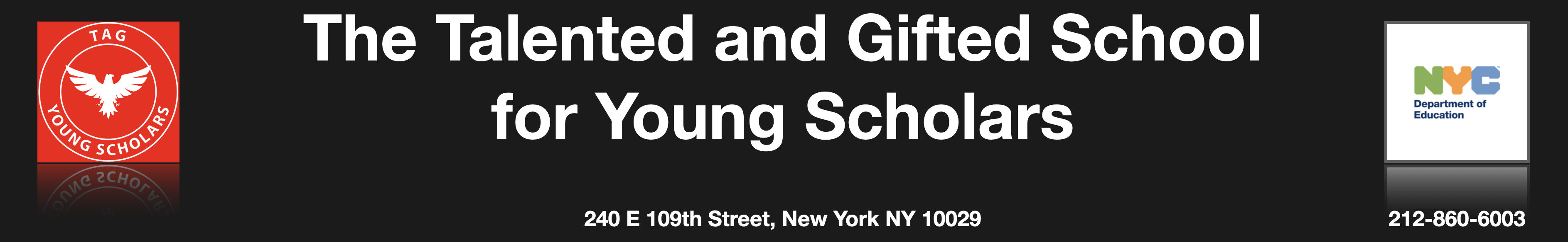 Talented and Gifted School for Young Scholars